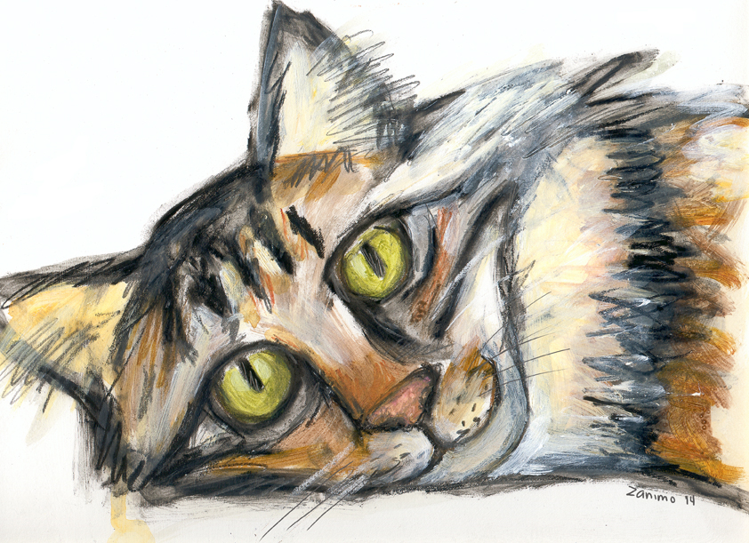 Tabby Cat No.2