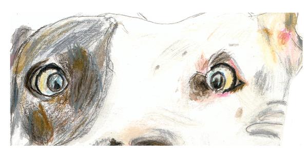 Rosie's eyes
